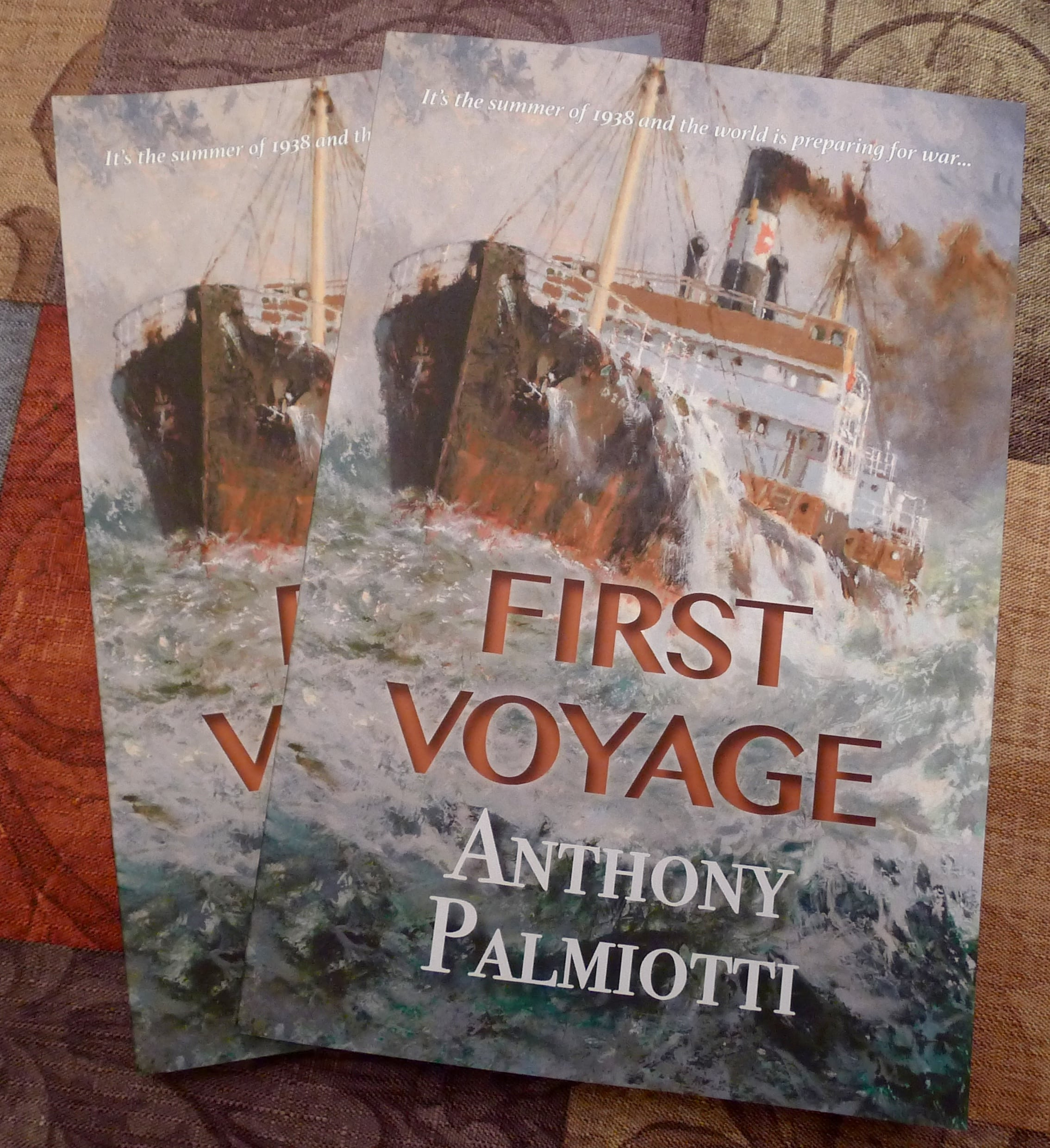 First Voyage: Anthony Palmiotti, author