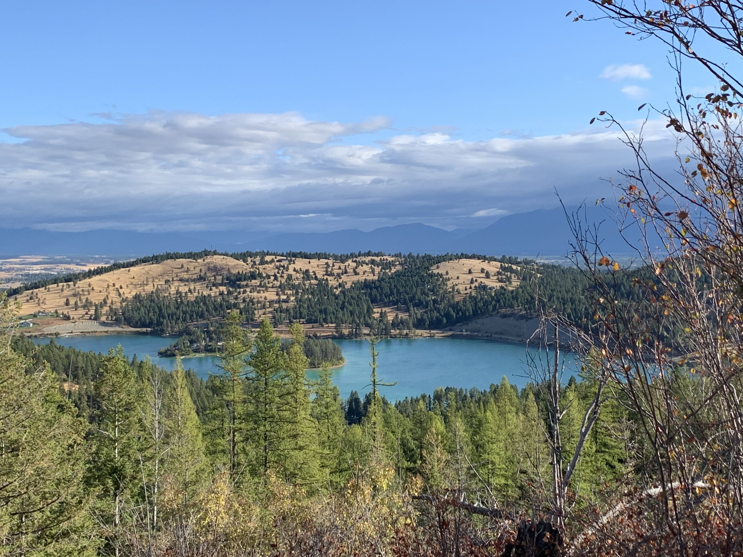 So you want land with views? photo of foys lake