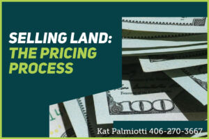 Selling Land: The Pricing Process title photo