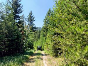 Land Sale Challenges: Access photo of side-by-side in woods